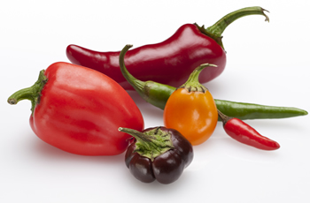 Scorchio Hot Pepper Saces & Chilli Gifts